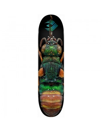 """Powell Peralta Skateboard BISS Ruby Tailed Wasp 8.5"""" Shape 244 (solo tabla)"""
