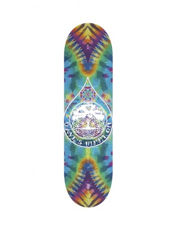 "Skateboard NO FUTURE Dave Angelus 8.5"" (solo tabla)"