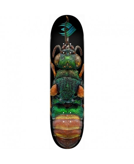 """Powell Peralta Skateboard BISS Ruby Tailed Wasp 8.5"""" (solo tabla)"""