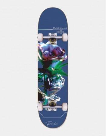Skateboard Primitive...