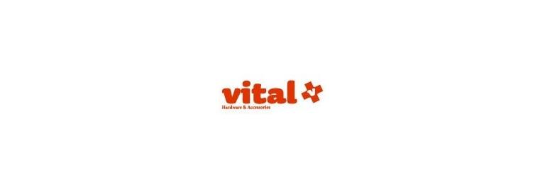 VITAL | Rodamientos de longboard | Kaina Skateshop
